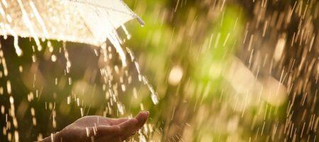 Дожди остудят часть Украины: где сохранится жара