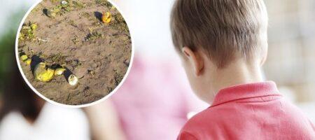 Школьников заставили работать на поле вместо уроков: в Черкассах разгорается скандал