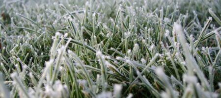 В ноябре в Украину придет зимнее похолодание